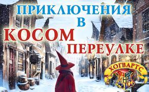 """Детский лагерь Новогодняя программа """"Приключения в Косом переулке"""""""